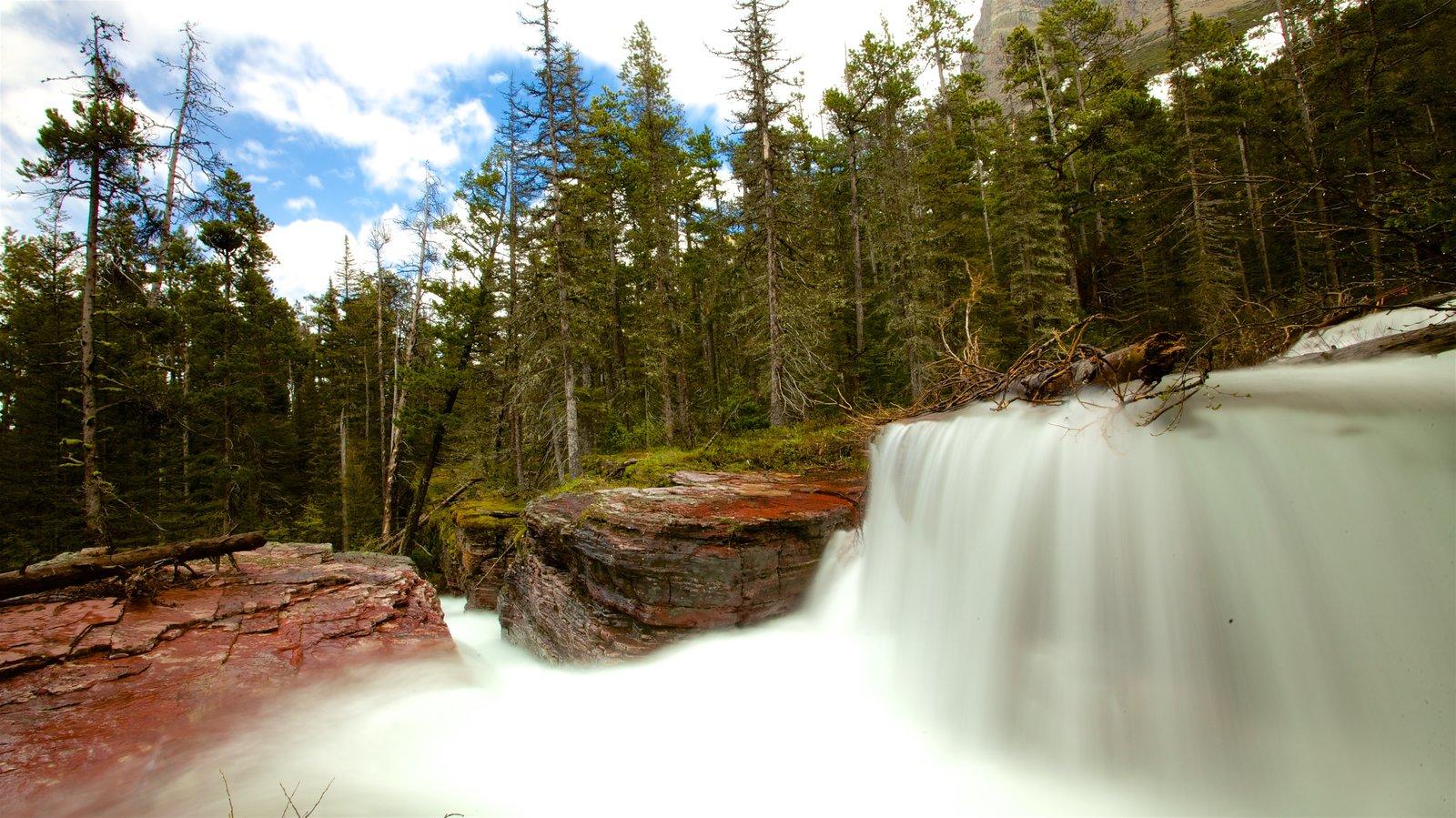 Parque Nacional de los Glaciares ofreciendo un río o arroyo y escenas forestales