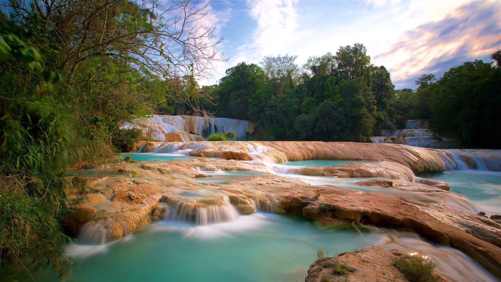 Cascadas de Agua Azul mostrando un río o arroyo, una puesta de sol y vistas de paisajes