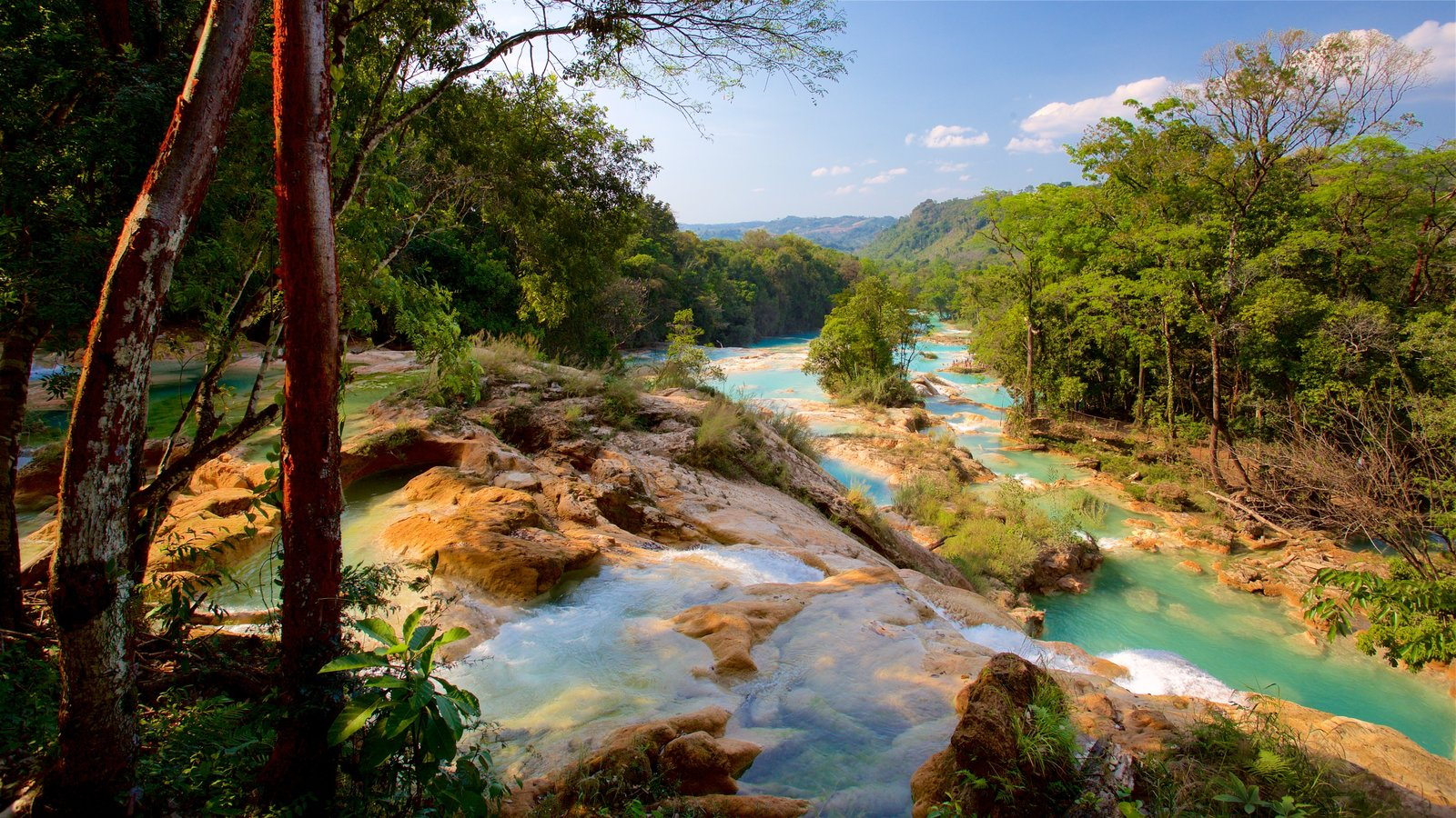 Cascadas de Agua Azul ofreciendo un río o arroyo, vistas de paisajes y escenas tranquilas