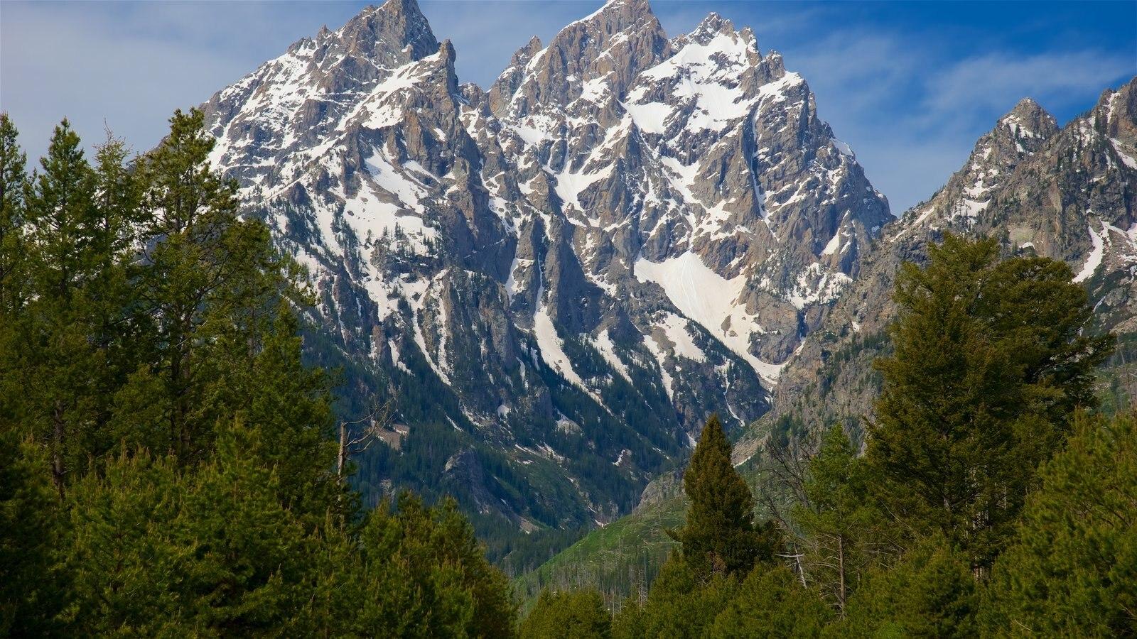 Lago Jenny mostrando montañas y nieve