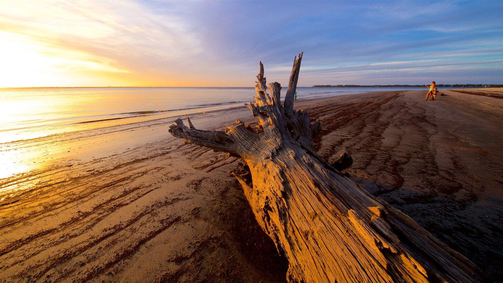 Driftwood Beach que inclui paisagens litorâneas, um pôr do sol e uma praia de areia