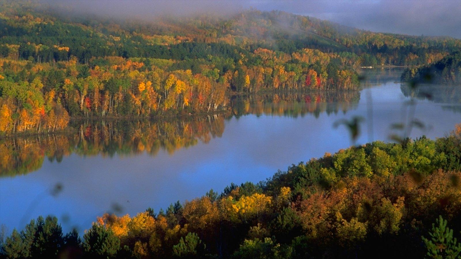 Minneapolis - St. Paul caracterizando paisagem, um rio ou córrego e cenas de floresta