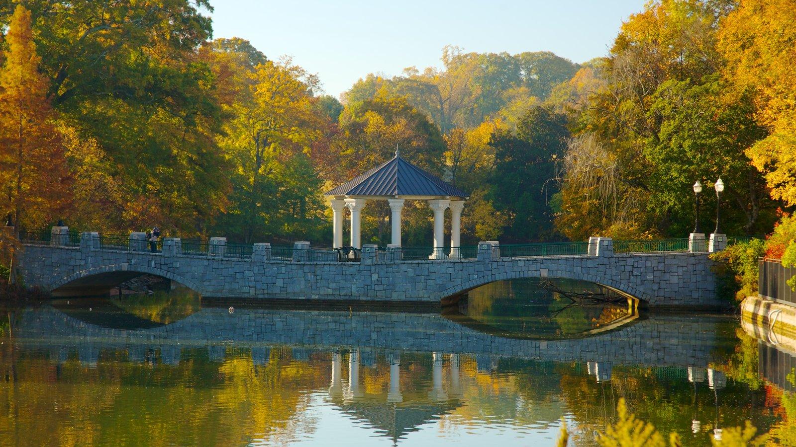 Atlanta que inclui um rio ou córrego, cores do outono e um parque