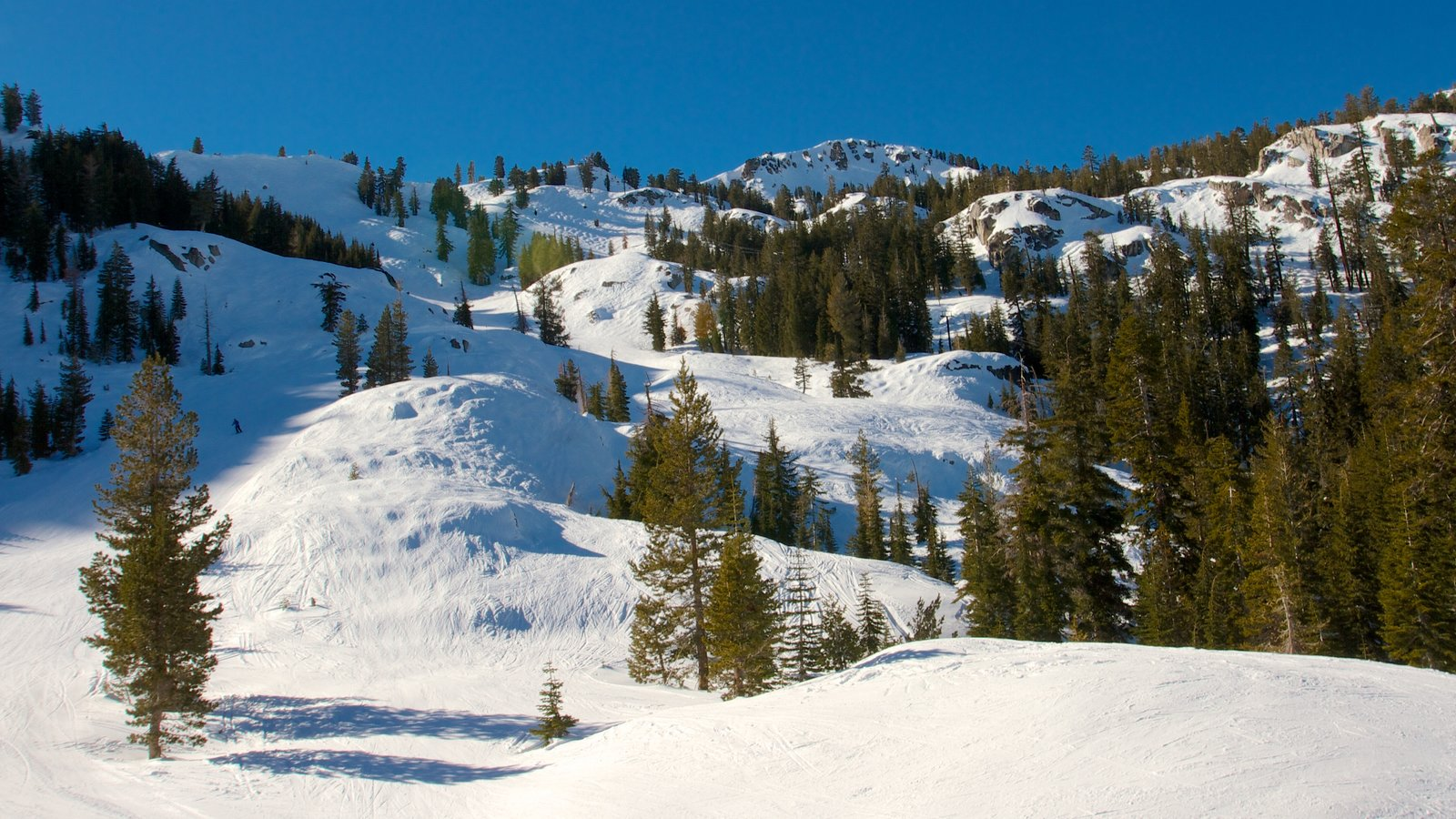 Squaw Valley Resort ofreciendo escenas tranquilas, vistas de paisajes y nieve