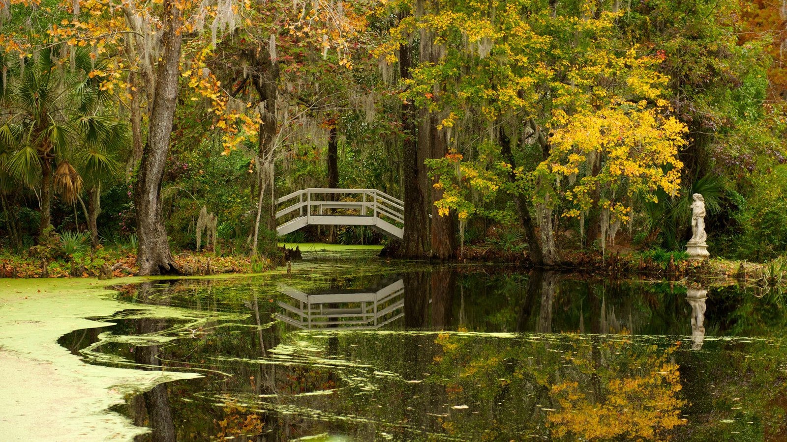 Fall Pictures: View Images of South Carolina