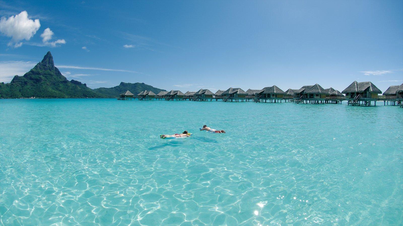 Bora Bora showing tropical scenes, general coastal views and landscape views
