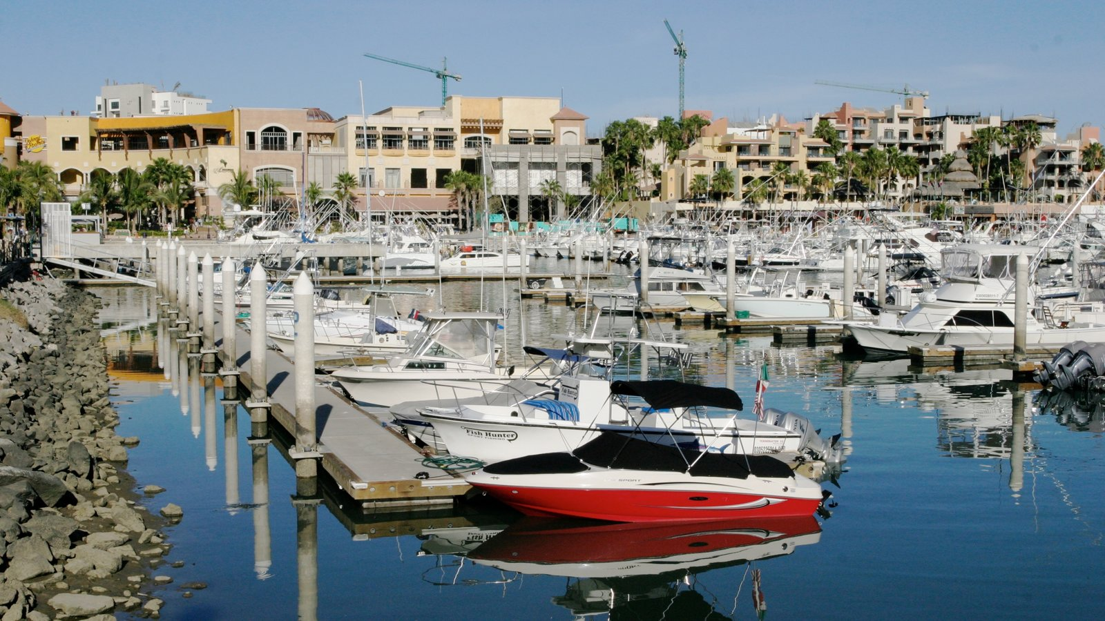 Cabo San Lucas featuring a coastal town, a bay or harbour and a marina