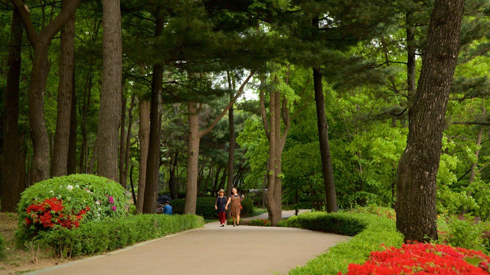 Jardín Botánico de Namsan mostrando un jardín y flores silvestres y también una pareja