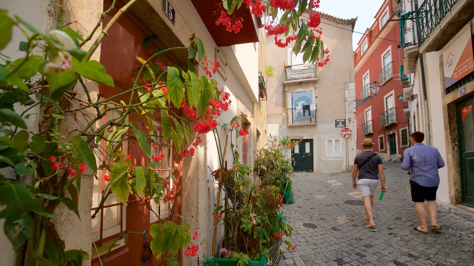 Alfama showing street scenes and flowers as well as a couple