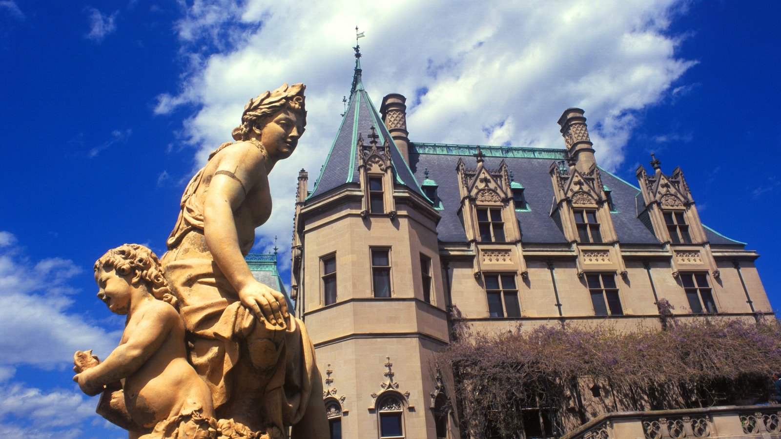 North Carolina which includes chateau or palace, heritage architecture and a statue or sculpture