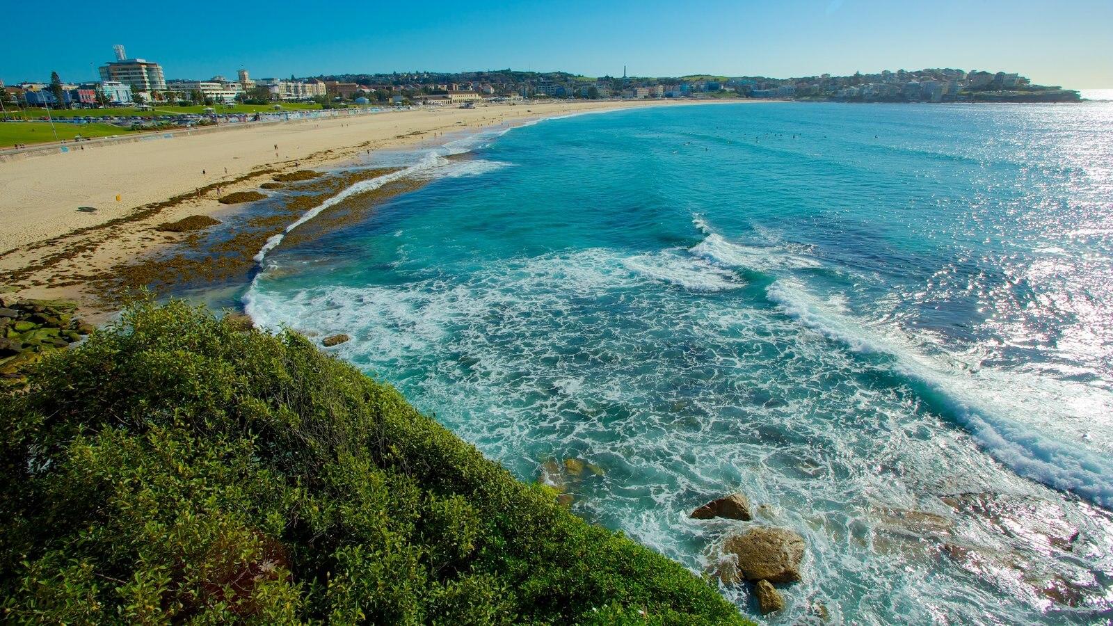 Sydney showing a sandy beach, landscape views and general coastal views