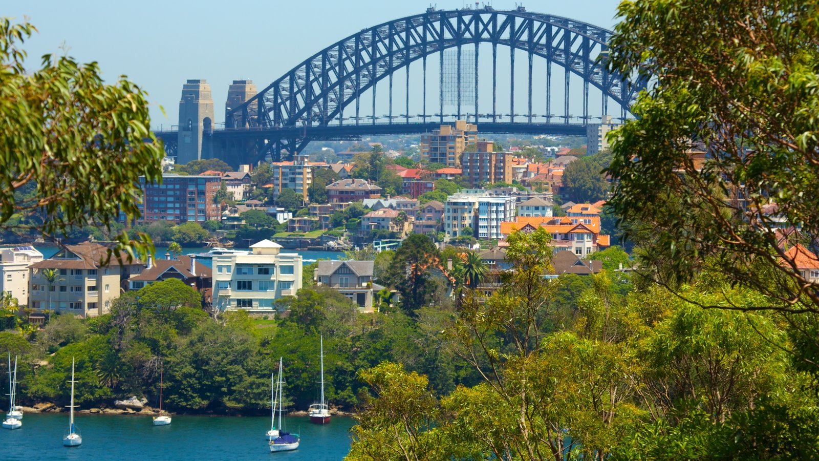 Sydney featuring a bay or harbor, a bridge and a city