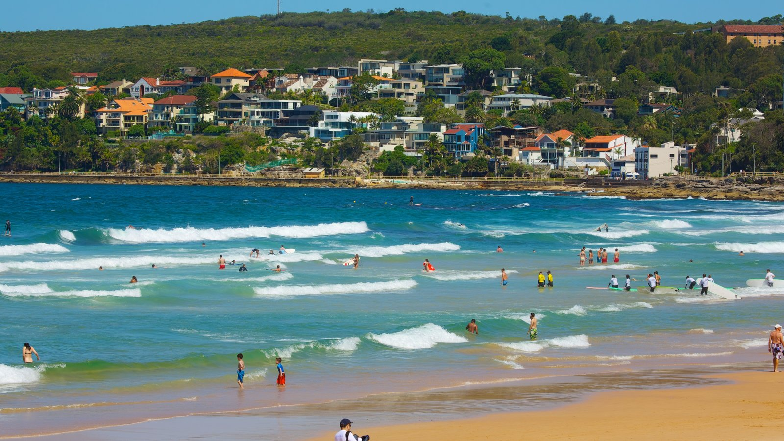 Sydney which includes a coastal town, swimming and surf