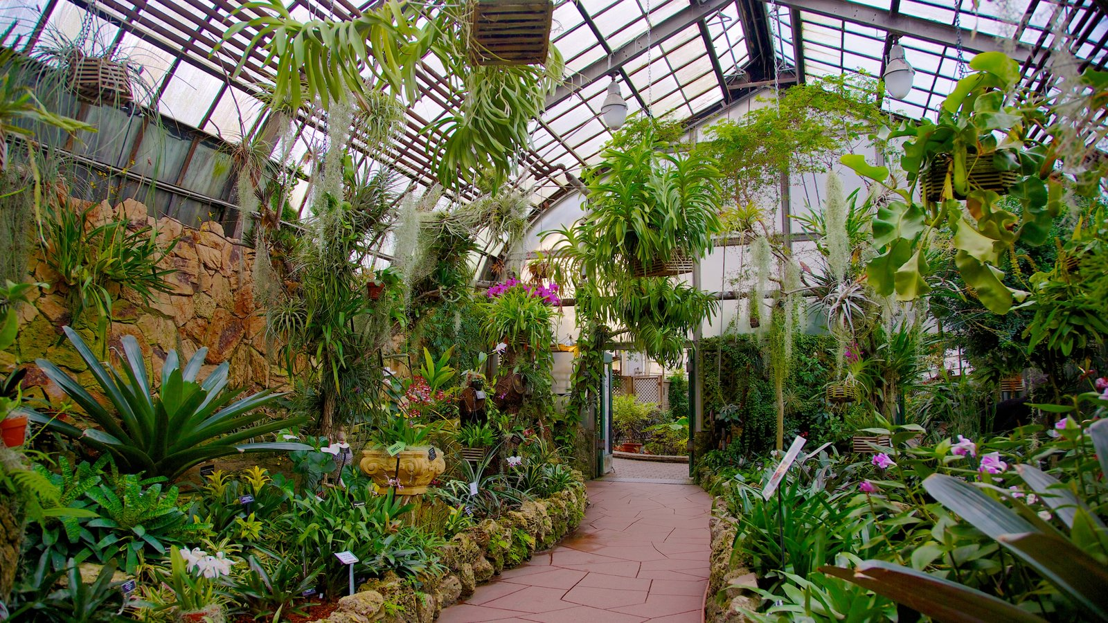 Lincoln Park Conservatory showing a garden, interior views and flowers