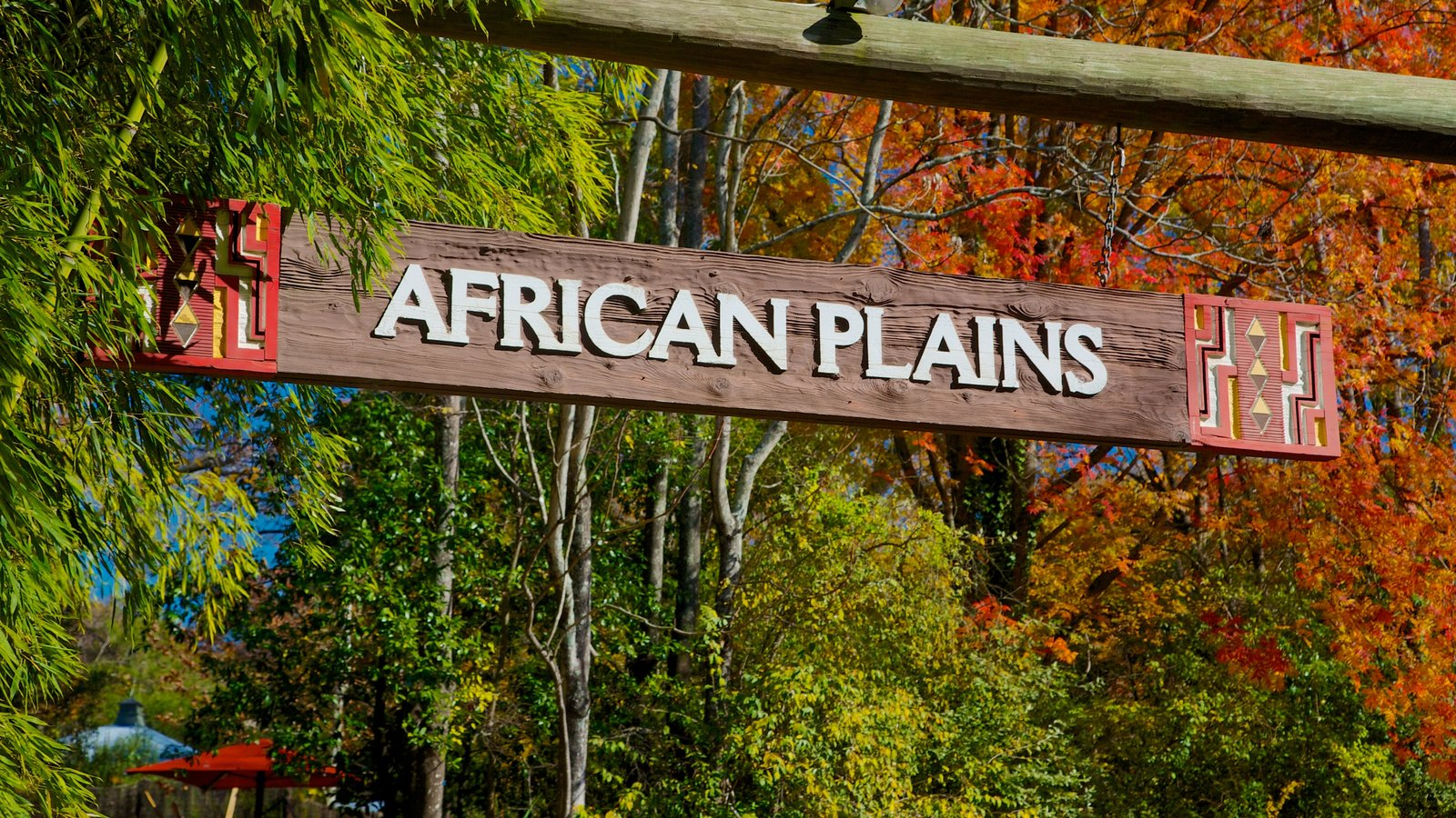 Zoo Atlanta featuring autumn leaves, signage and zoo animals