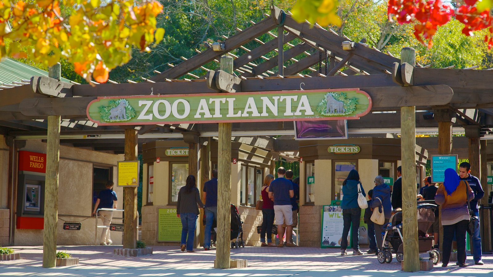 Zoo Atlanta showing zoo animals and signage as well as a large group of people