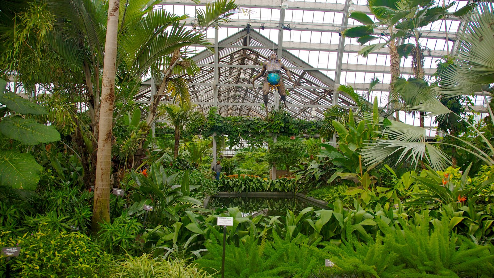 Garfield Park Conservatory featuring interior views, a park and flowers