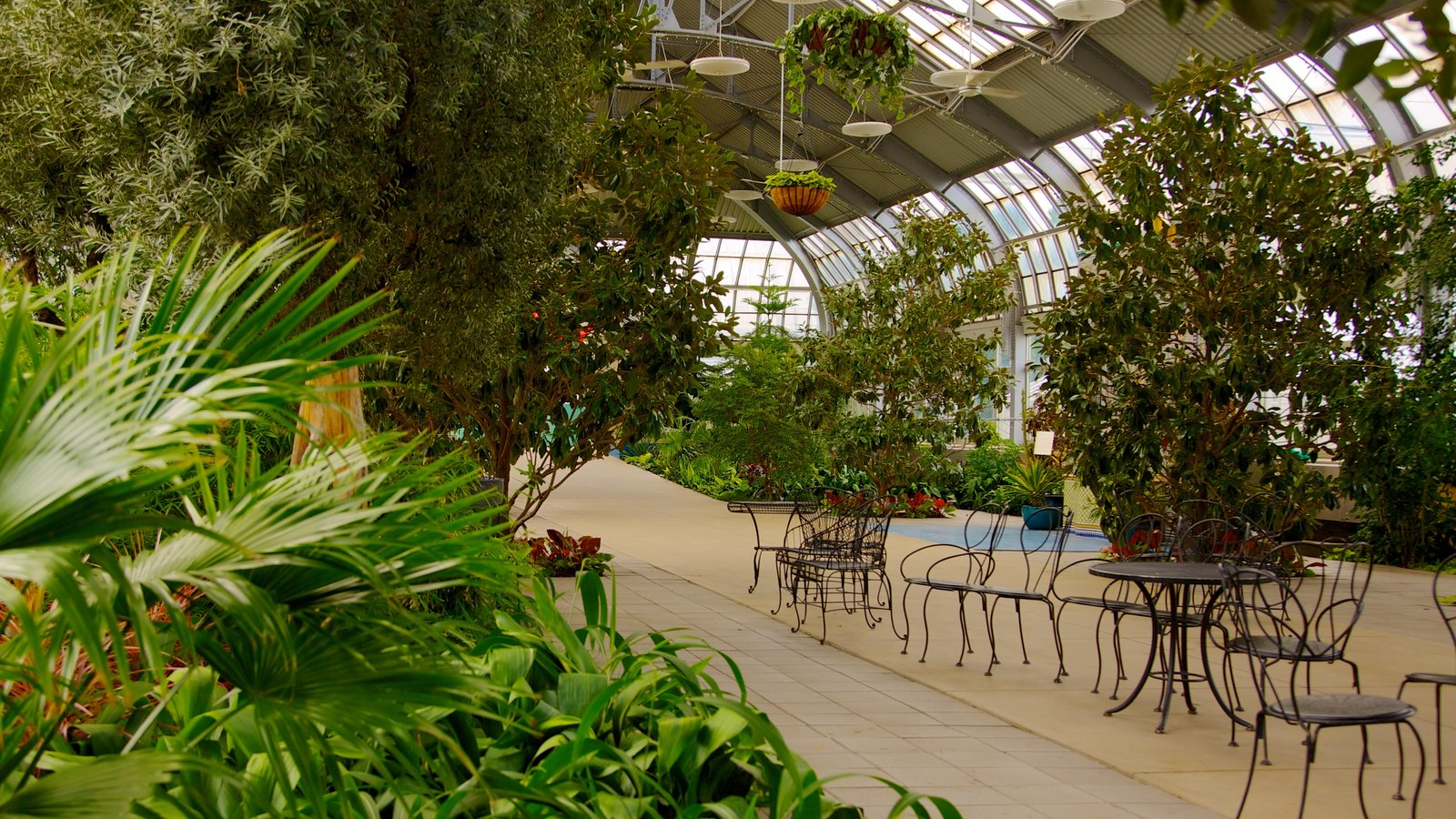 Garfield Park Conservatory showing a garden and interior views