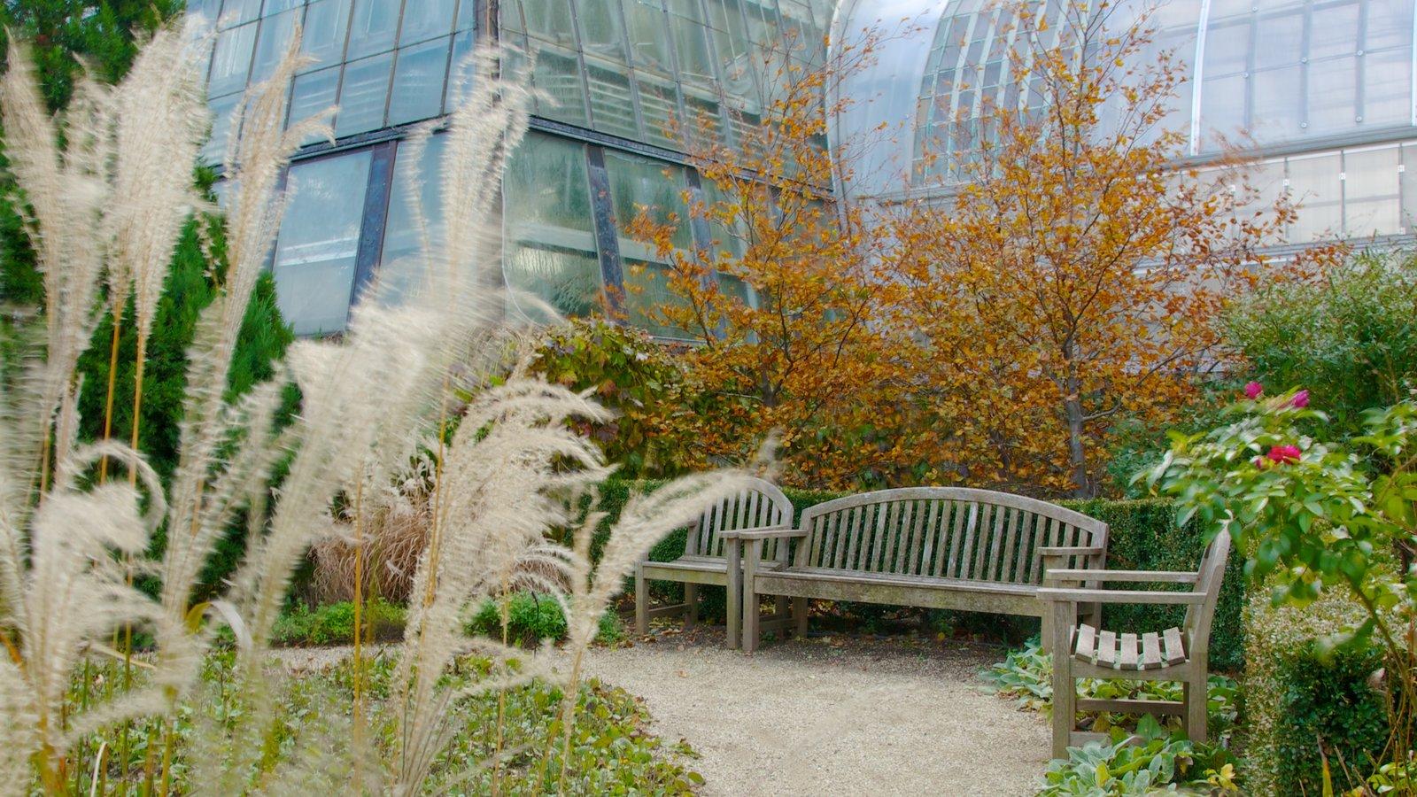 Garfield Park Conservatory featuring a park