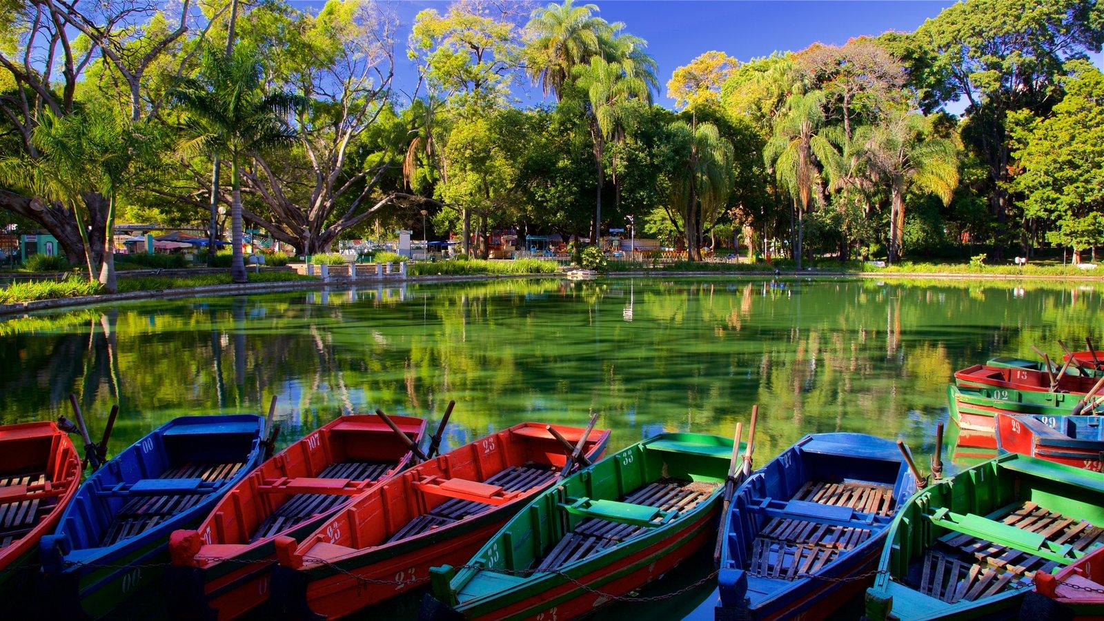 Parque Municipal Américo Renné Giannetti mostrando um parque e um lago