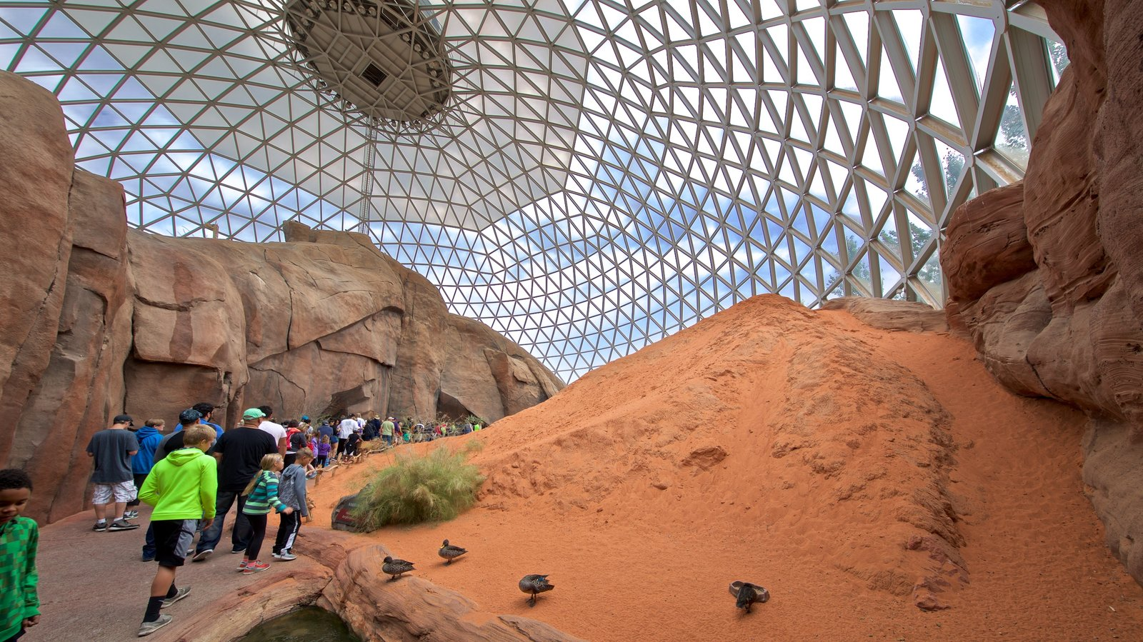 Henry Doorly Zoo which includes bird life and interior views as well as a small group of people