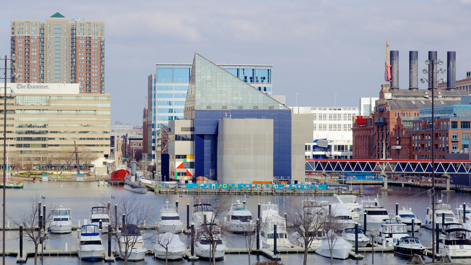Baltimore Inner Harbor Marina showing a high rise building, boating and a bay or harbor