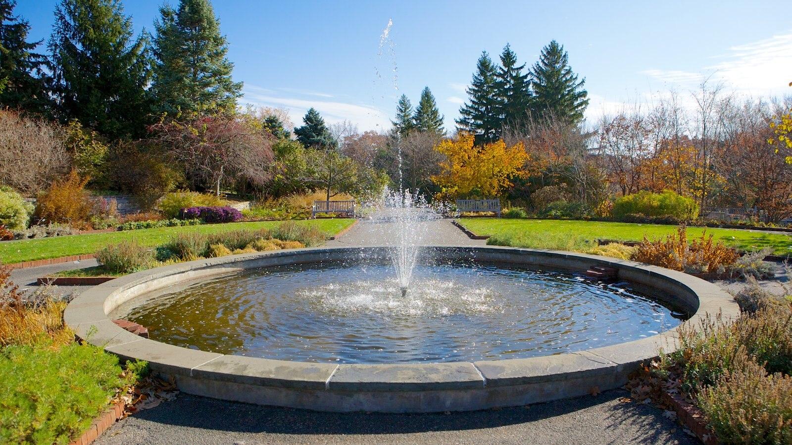 Minnesota Landscape Arboretum caracterizando um parque, uma fonte e paisagem
