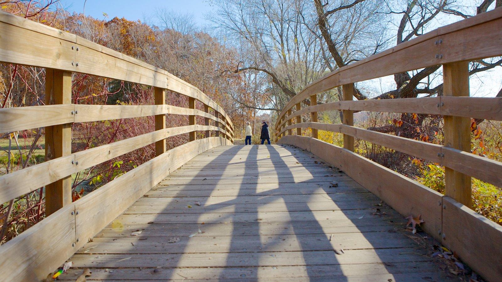 Minnesota Landscape Arboretum que inclui uma ponte e um jardim