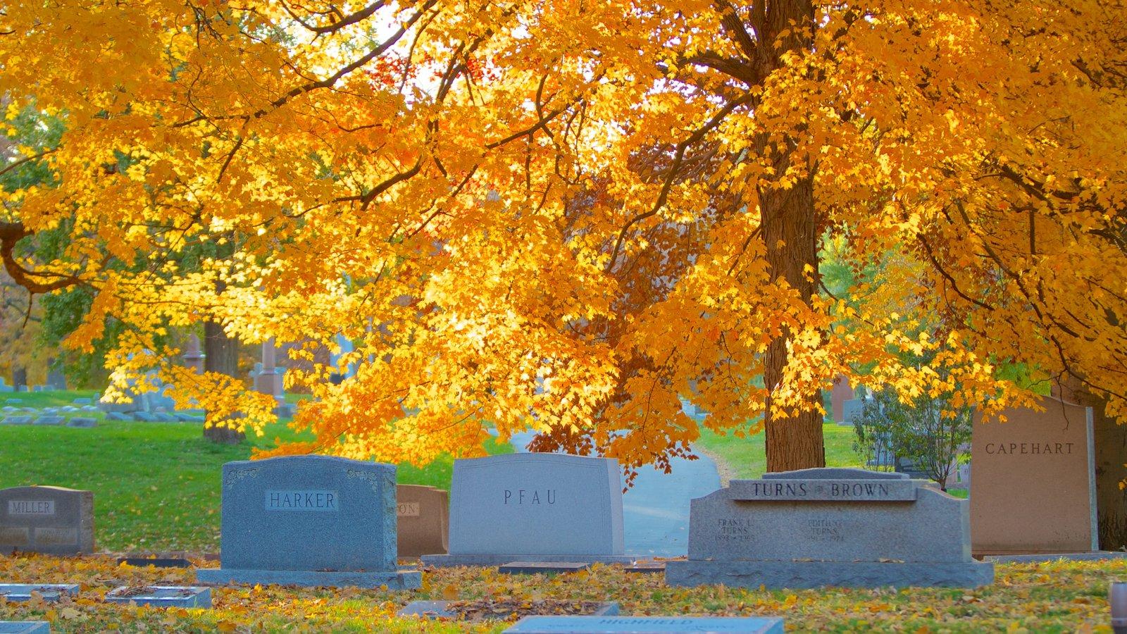 Crown Hill Cemetery mostrando un monumento, un cementerio y los colores del otoño