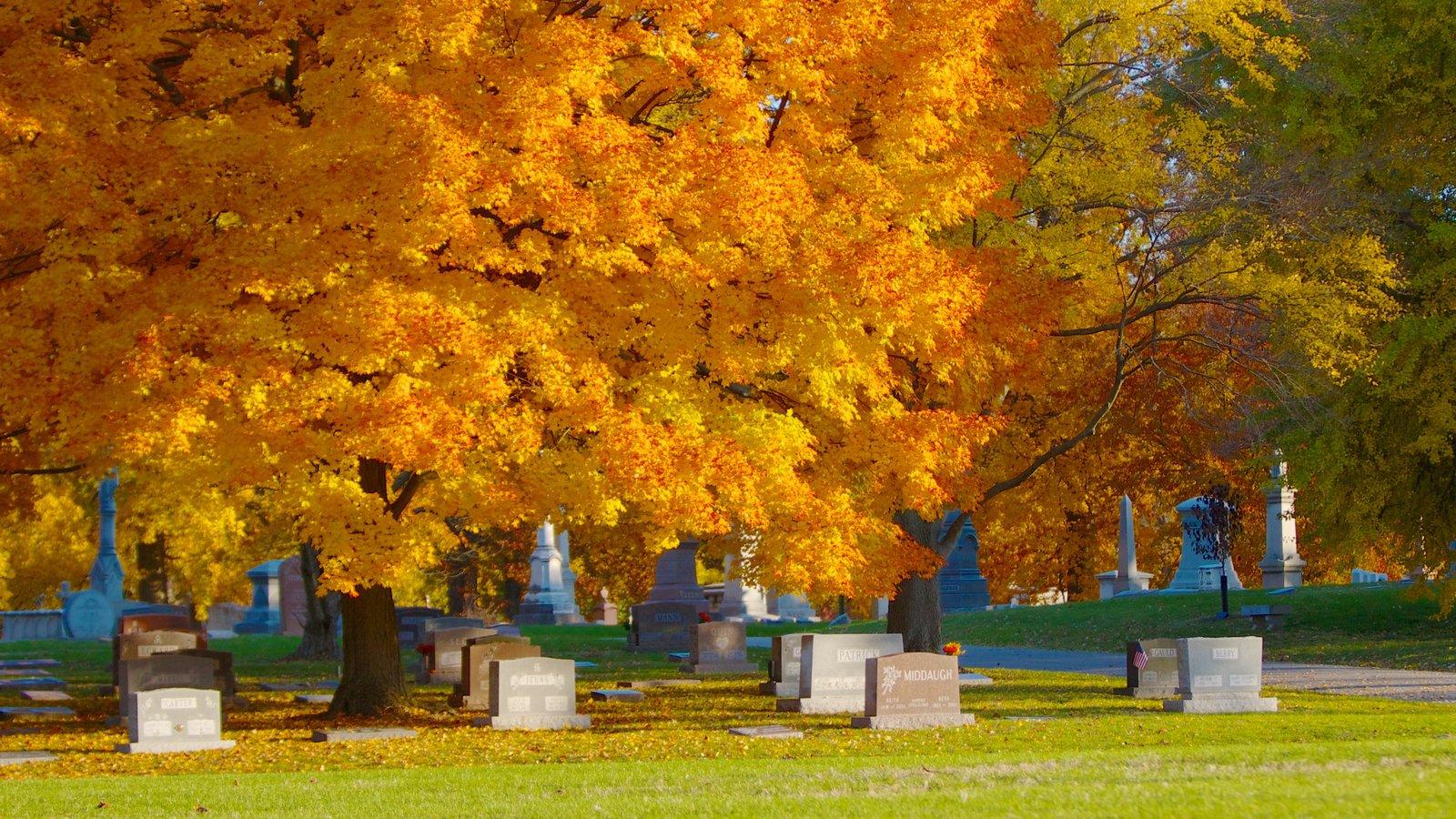 Crown Hill Cemetery mostrando un cementerio, un parque y hojas de otoño