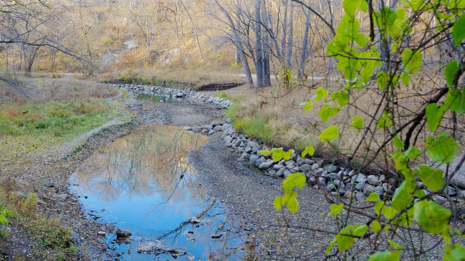 Minnesota caracterizando um rio ou córrego, um parque e paisagem