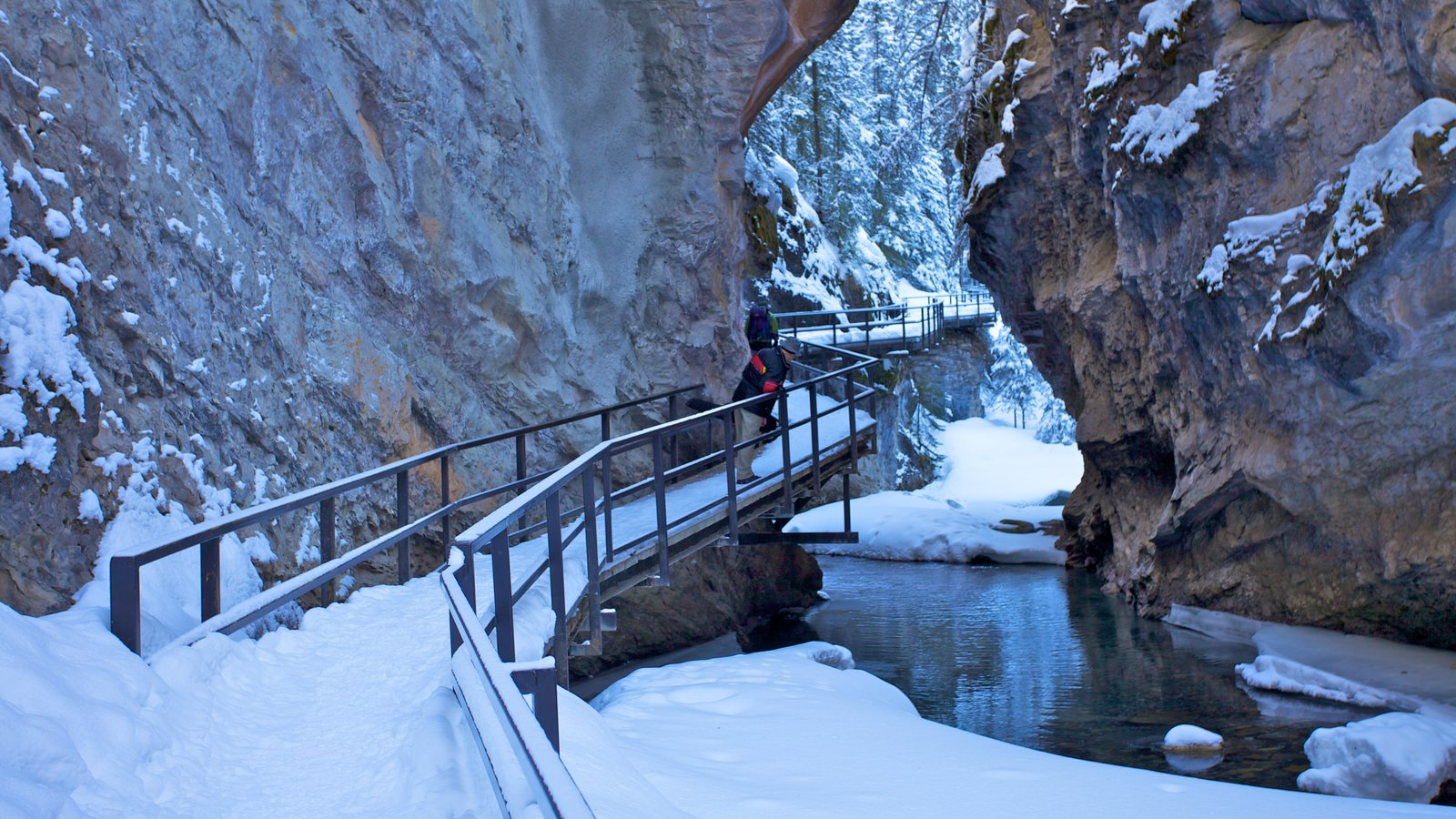 Johnston Canyon which includes hiking or walking, a gorge or canyon and a river or creek