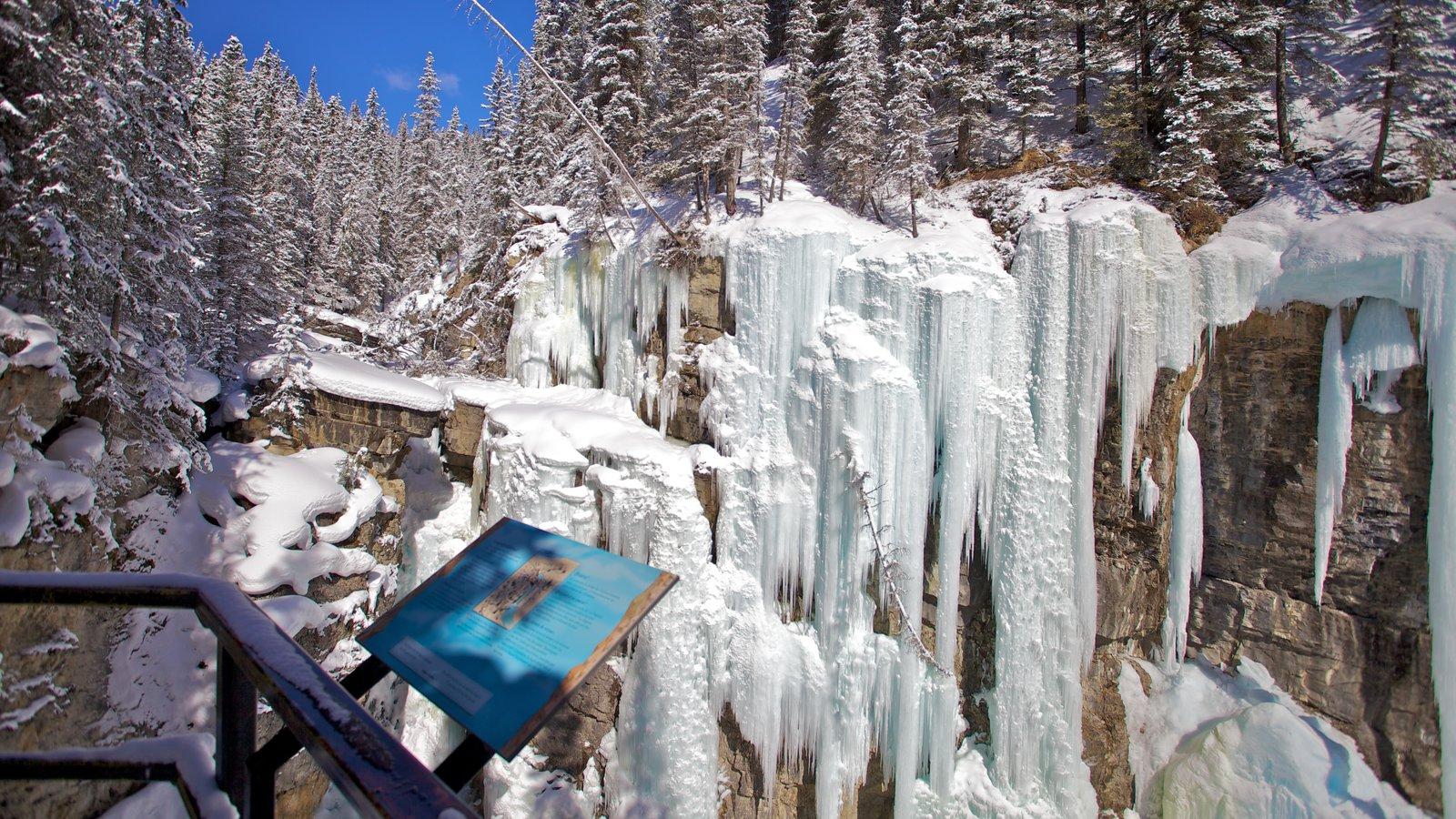 Johnston Canyon ofreciendo un barranco o cañón, nieve y vistas de paisajes