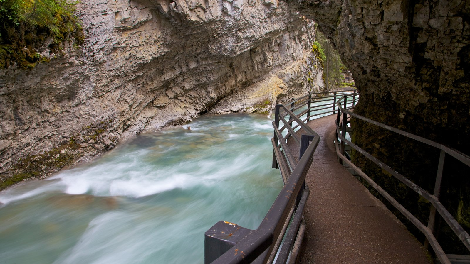 Johnston Canyon featuring a river or creek, a gorge or canyon and landscape views