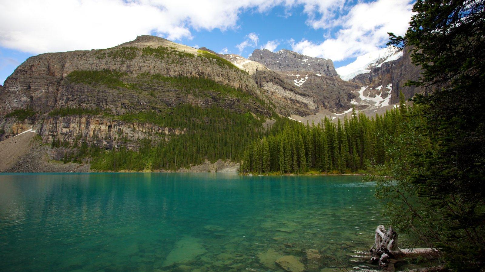 Lago Moraine que incluye un lago o abrevadero, montañas y vistas de paisajes