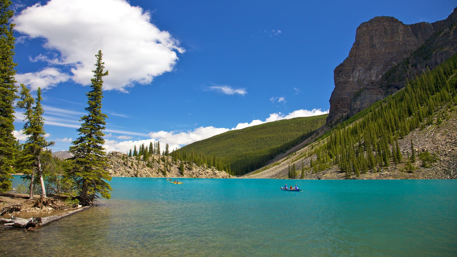 Moraine Lake featuring a lake or waterhole, kayaking or canoeing and forests