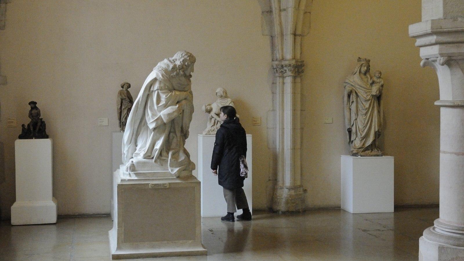 Dijon caracterizando uma estátua ou escultura, arte e vistas internas
