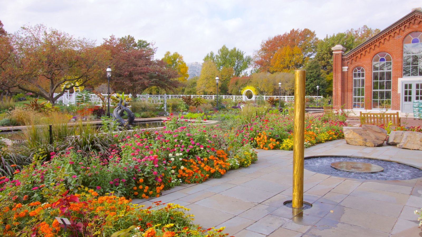 Missouri Botanical Gardens and Arboretum showing a garden and flowers