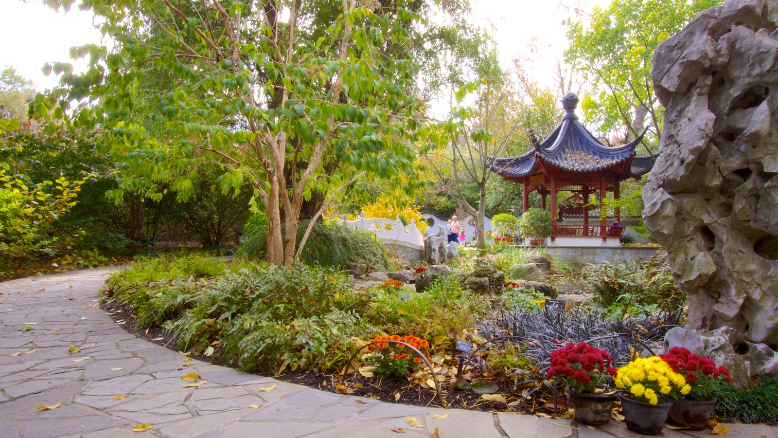 Missouri Botanical Gardens and Arboretum featuring flowers and a garden