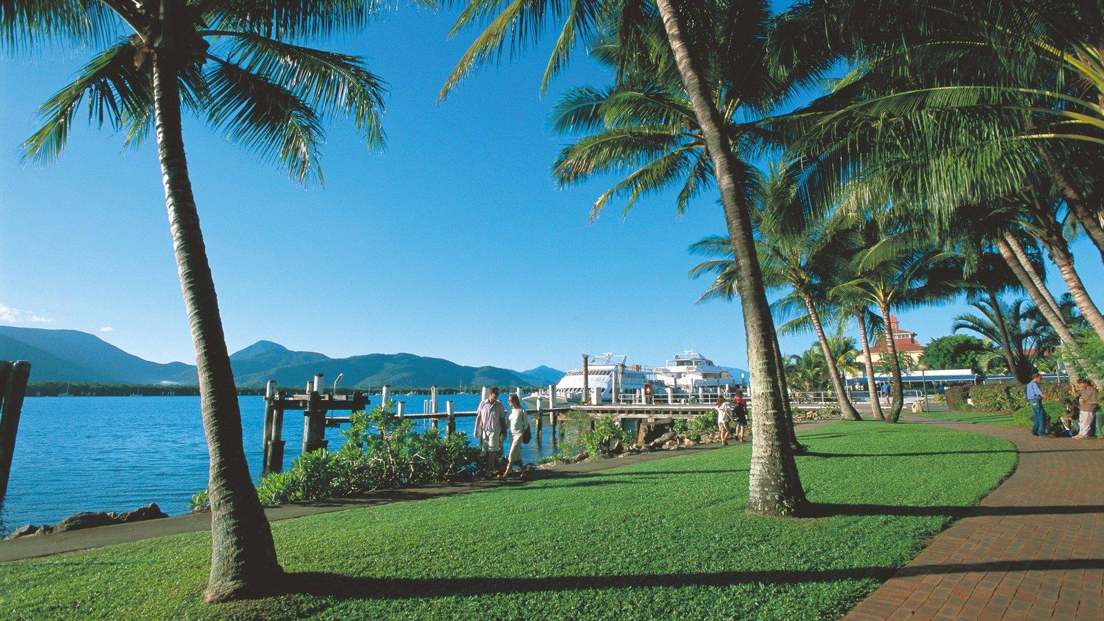 Cairns Esplanade que incluye escenas tropicales, una marina y vistas generales de la costa