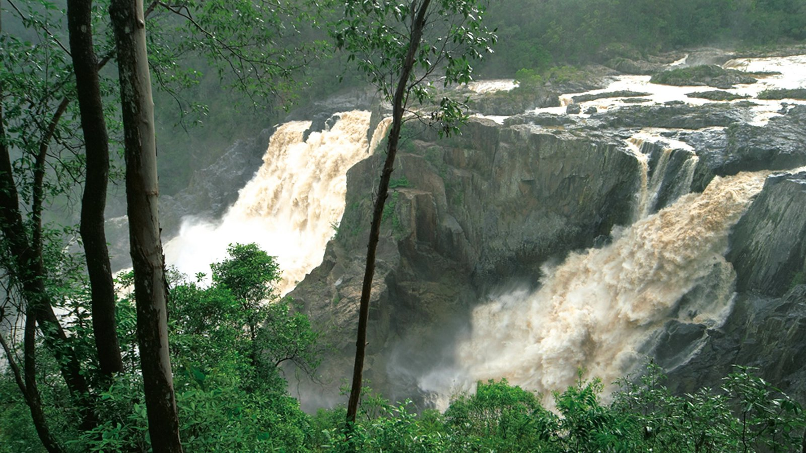 Barron Gorge National Park which includes a gorge or canyon and a cascade