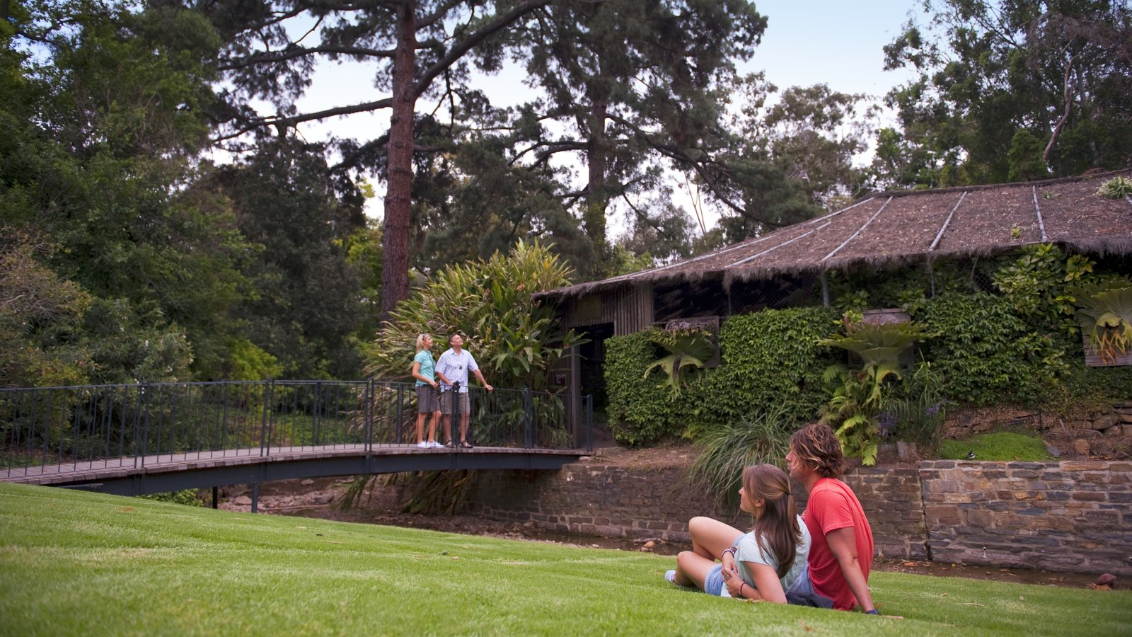 Adelaide Botanic Gardens which includes a garden and a bridge as well as a couple