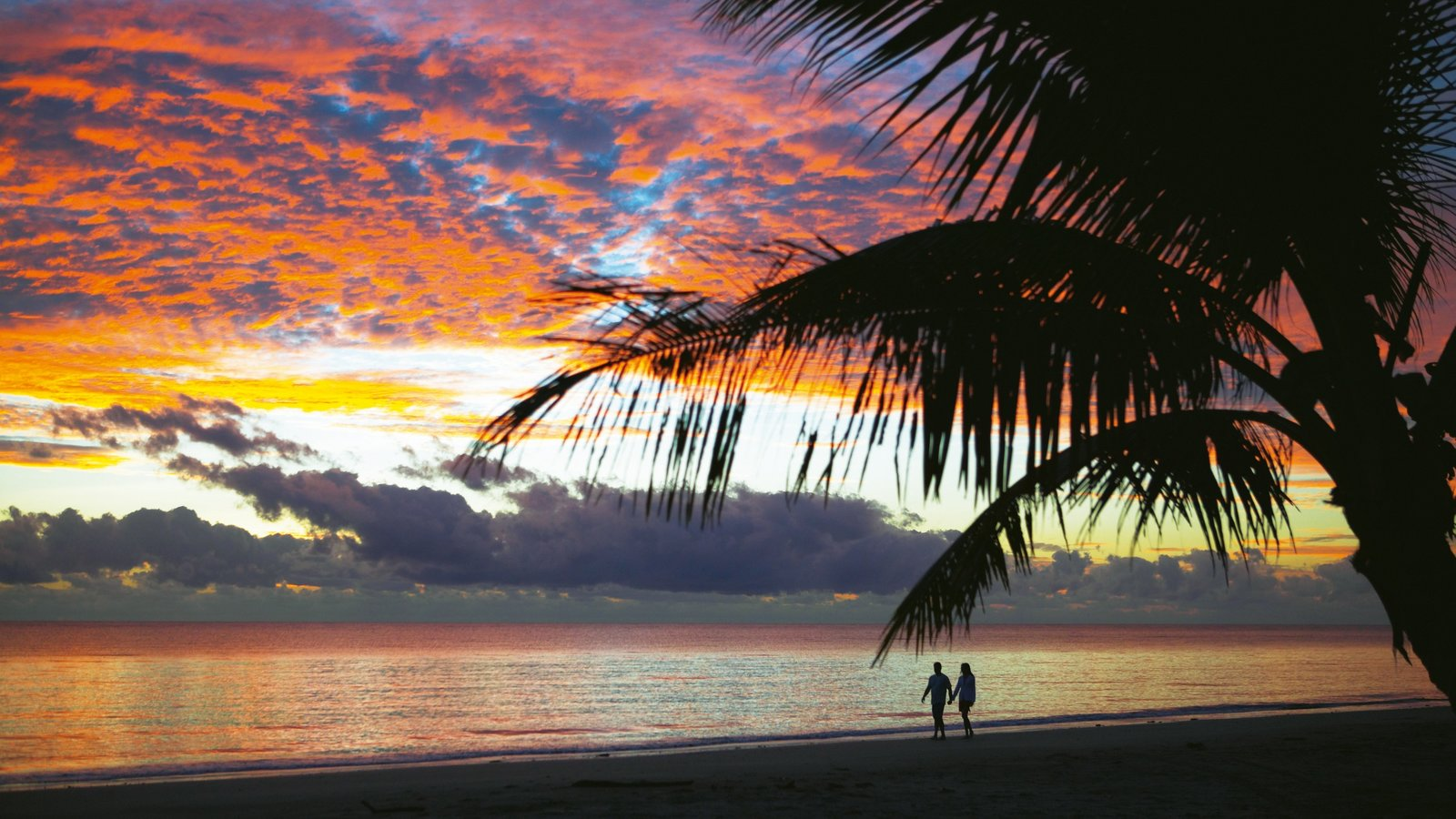 Port Douglas which includes a sandy beach, tropical scenes and a sunset