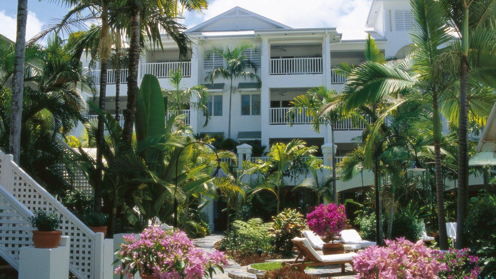 Palm Cove mostrando una ciudad, escenas tropicales y flores