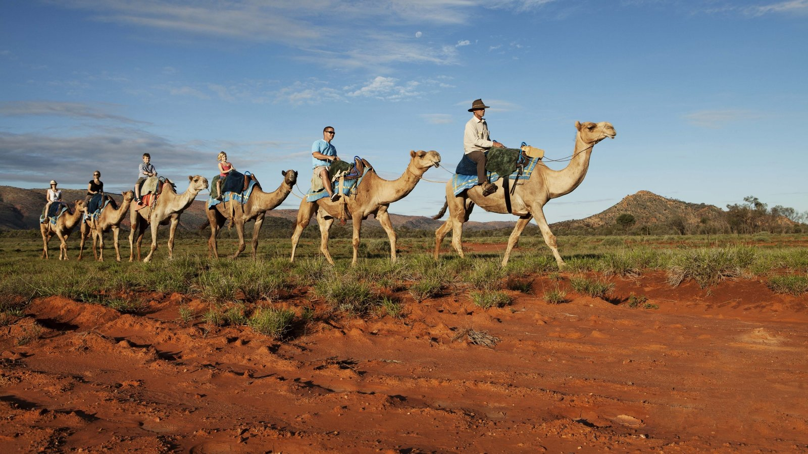 Alice Springs which includes horseriding, land animals and desert views