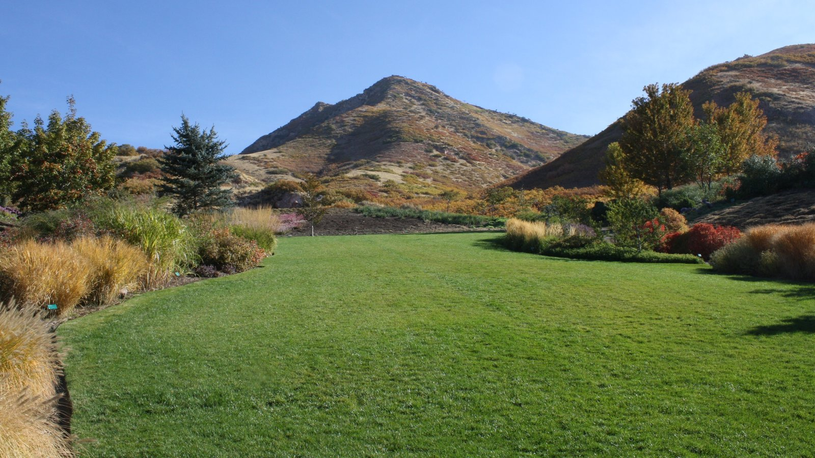 Red Butte Garden and Arboreteum featuring a park