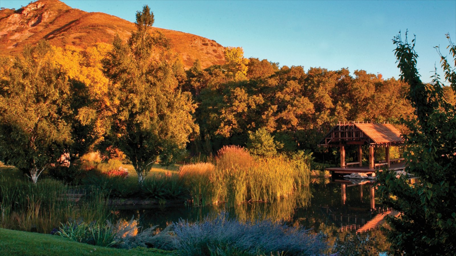 Red Butte Garden and Arboreteum showing landscape views, a park and a pond
