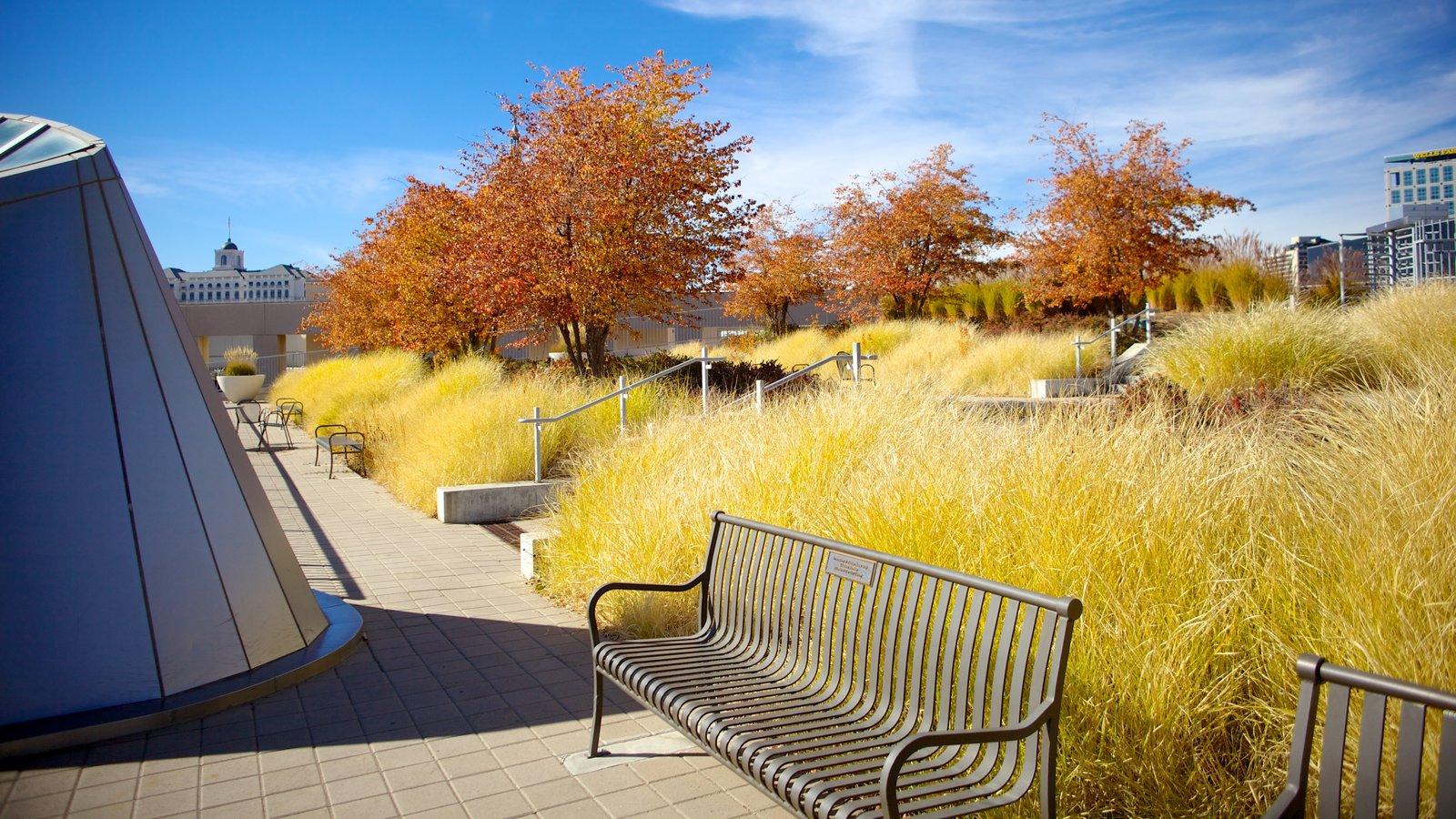 Edifício Principal da Biblioteca Pública de Salt Lake que inclui arquitetura moderna e folhas de outono