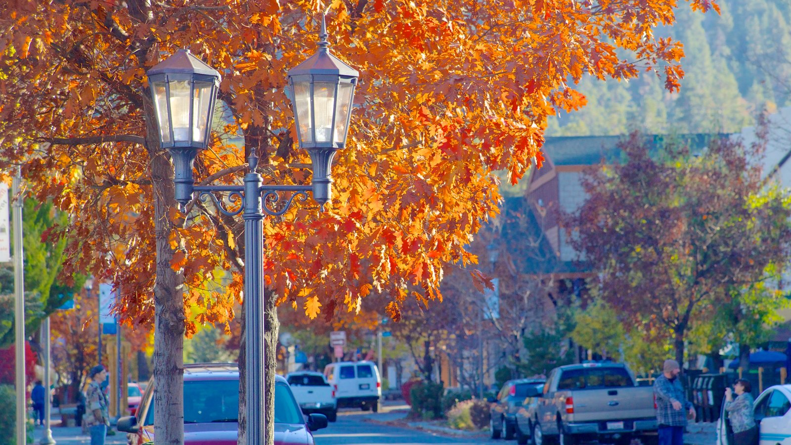 Big Bear Lake caracterizando cenas de rua e folhas de outono