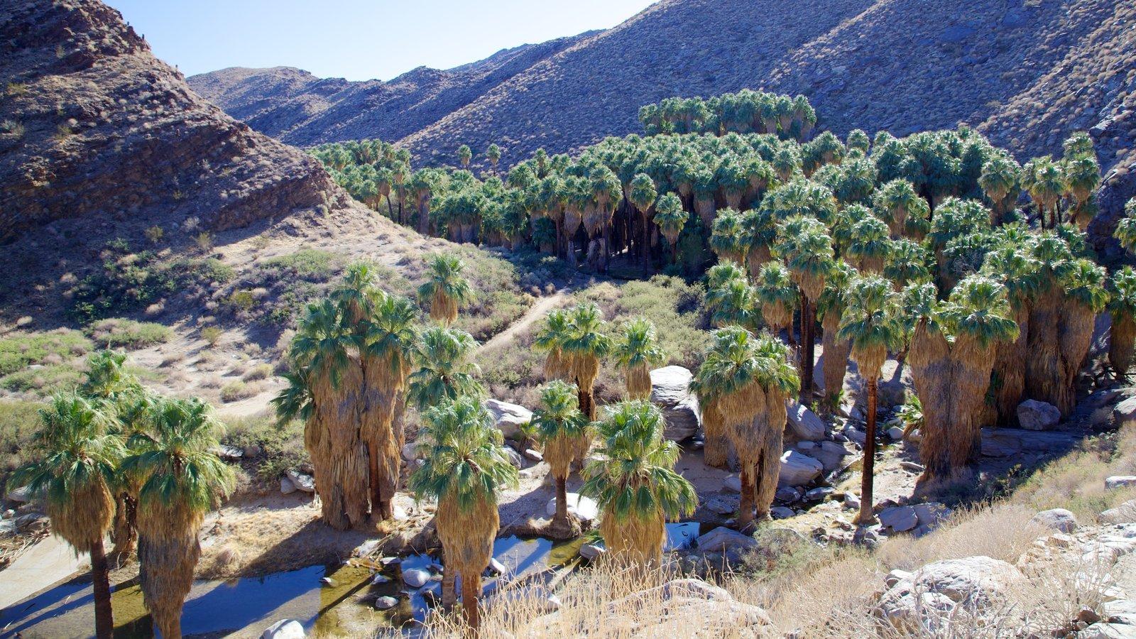 Cañones Indios que incluye un barranco o cañón y vistas de paisajes